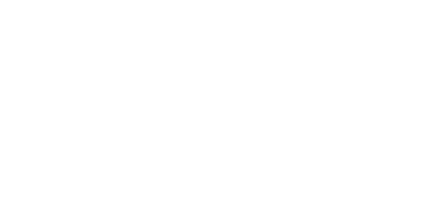 Wildix logo white